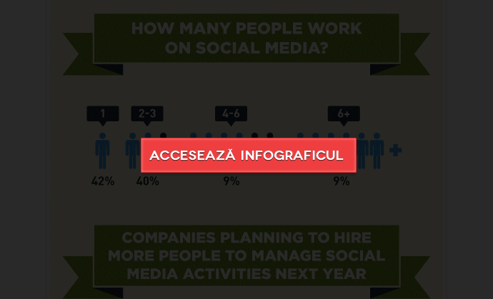 structura_echipei_social_media